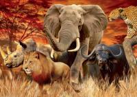 I Big Five del Kruger